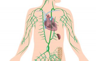 LymphaticDrainageTherapy